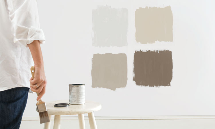 Painting wall swatches